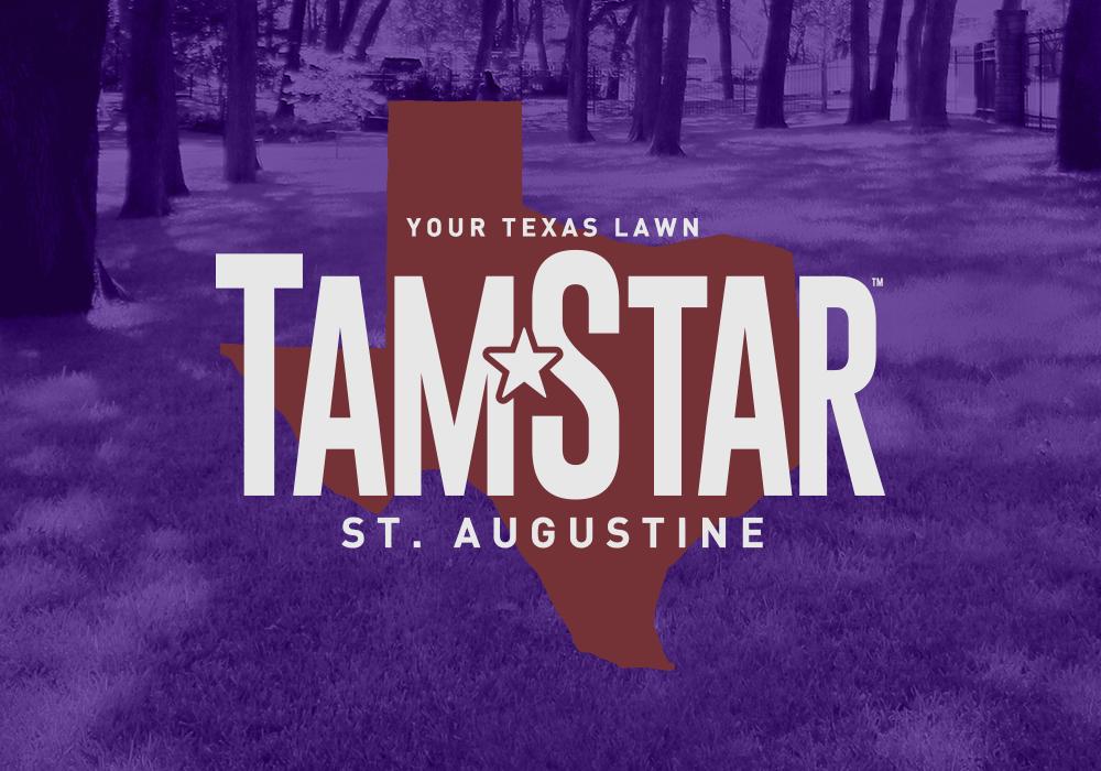 TamStar — Texas A&M