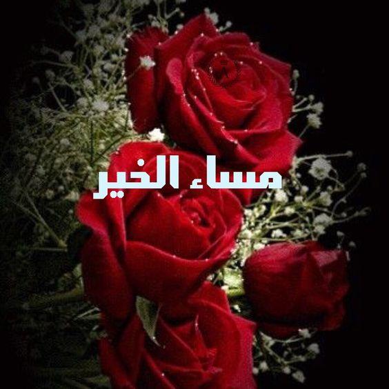 صور مساء الورد اجمل صور مساء الورد كيف
