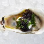 Find Your Oysters Pearl ║An App to Improve Your Oyster Selection