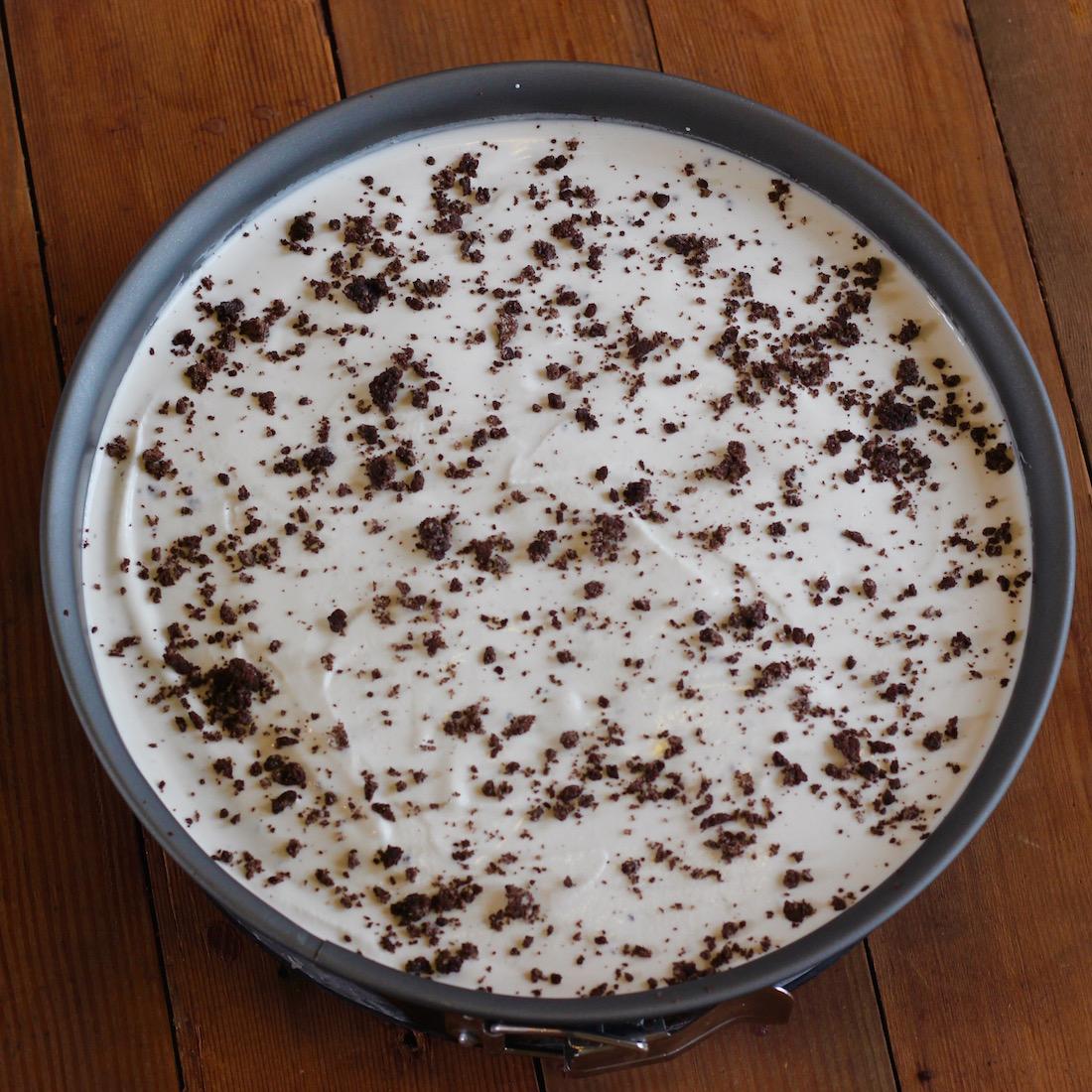 Ice Cream Cake11