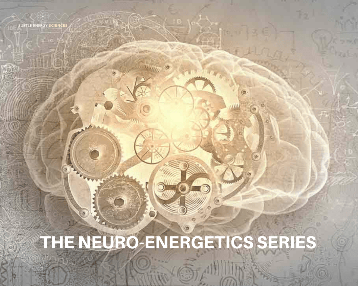 The Neuro - Energetics Series