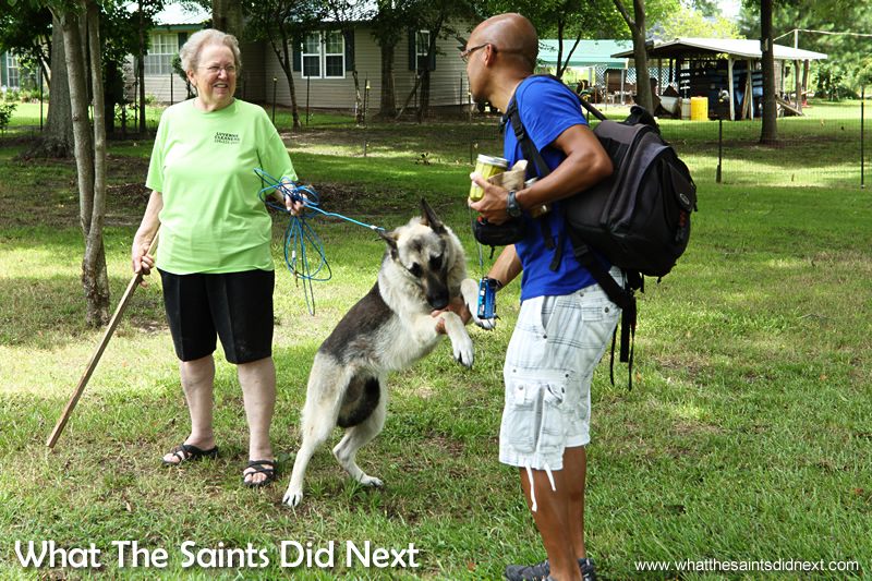It looks like this lady was about to whack Darrin, but no, it was all quite friendly. This big dog just wanted to play.