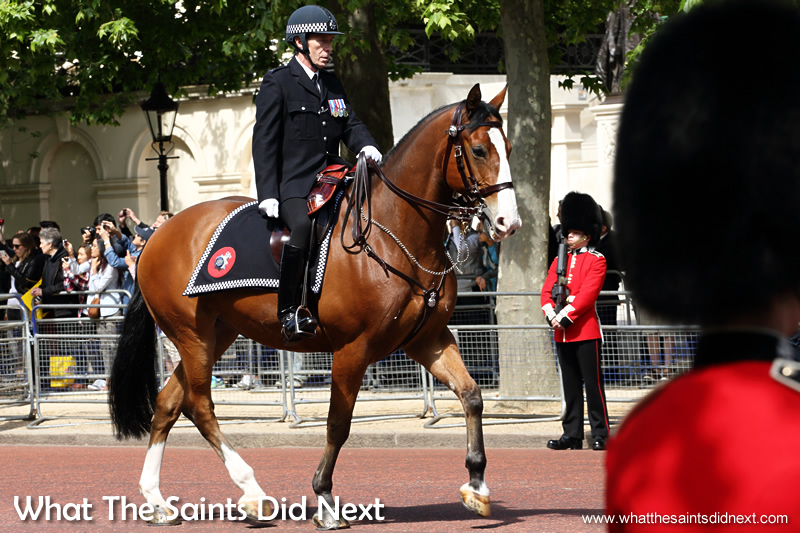 A mounted policeman leading the parade up the Mall.