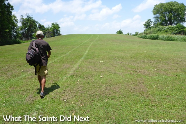 Darrin walking to the top of one of the smaller mounds on the Winterville Mounds site.