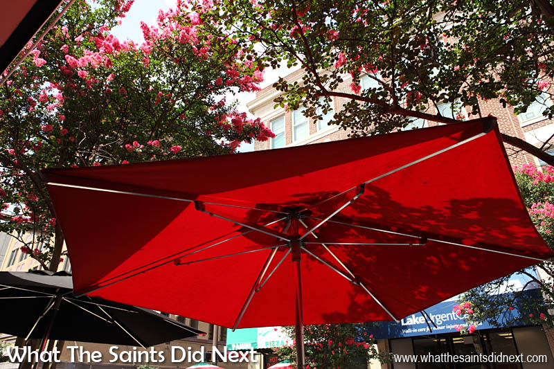 Taking shade along the sunny streets of Baton Rouge, Louisiana.