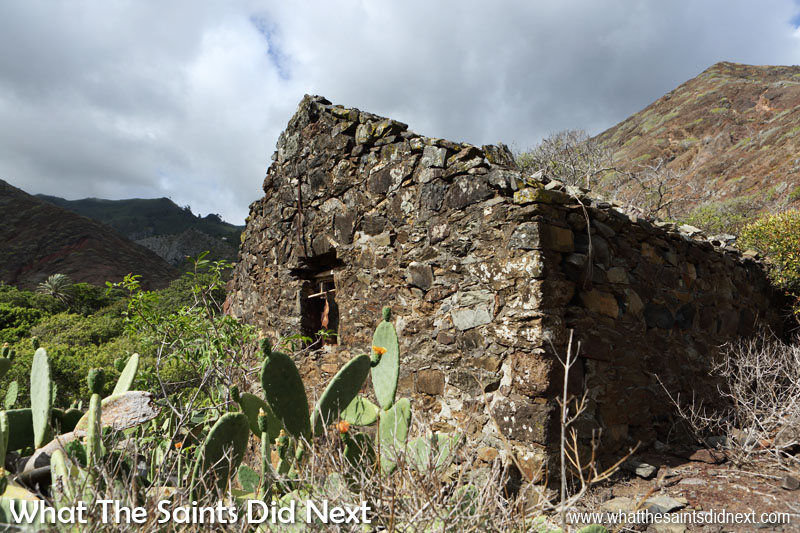 An old ruin right at the bottom of Sandy Bay valley. Down here the vegetation is more hardy in keeping with the more barren terrain.