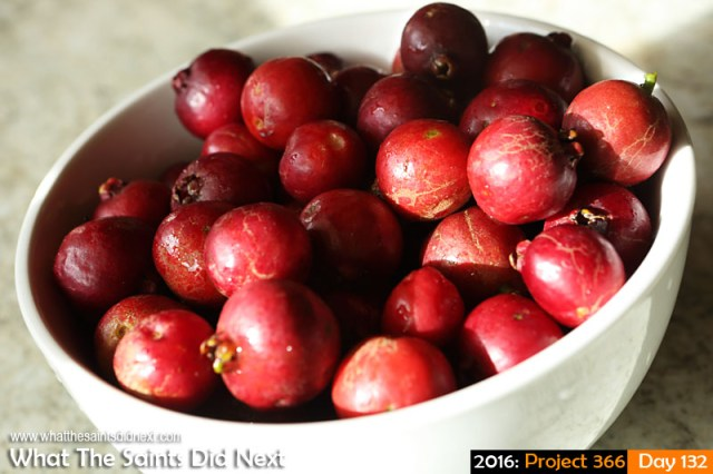 'Coat of many colours' 11 May 2016, 16:06 - 1/500, f/8, ISO-200 What The Saints Did Next - 2016 Project 366 A bowl of medlem fruit.