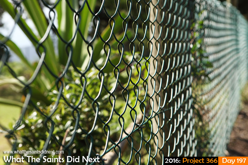 'Coup'<br /> 15 July, 2016, 15:07 - 1/250, f/8, ISO-200<br /> Chain link fencing.