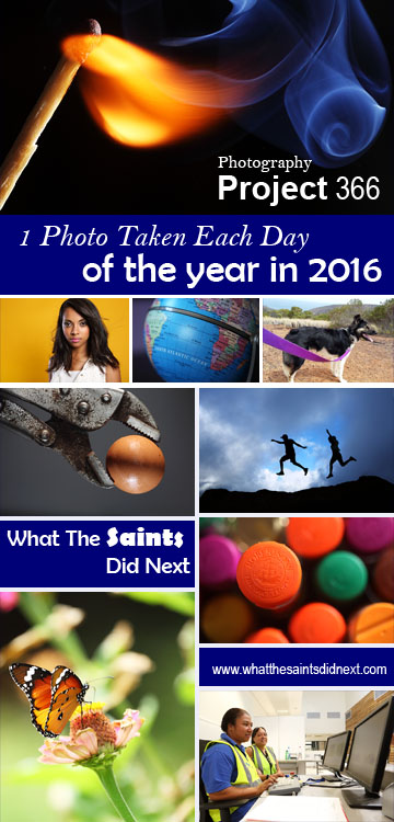 Project 366 - a single photo taken every day of the year for 2016 by What The Saints Did Next.