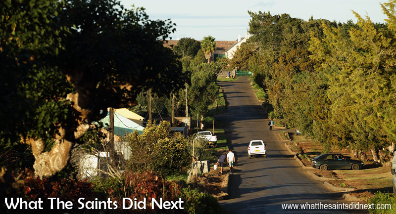 Longwood Avenue flanked by houses and trees strikes a pretty line to Longwood House, last home of Napoleon Bonaparte and now an important stop for tourists visiting St Helena.