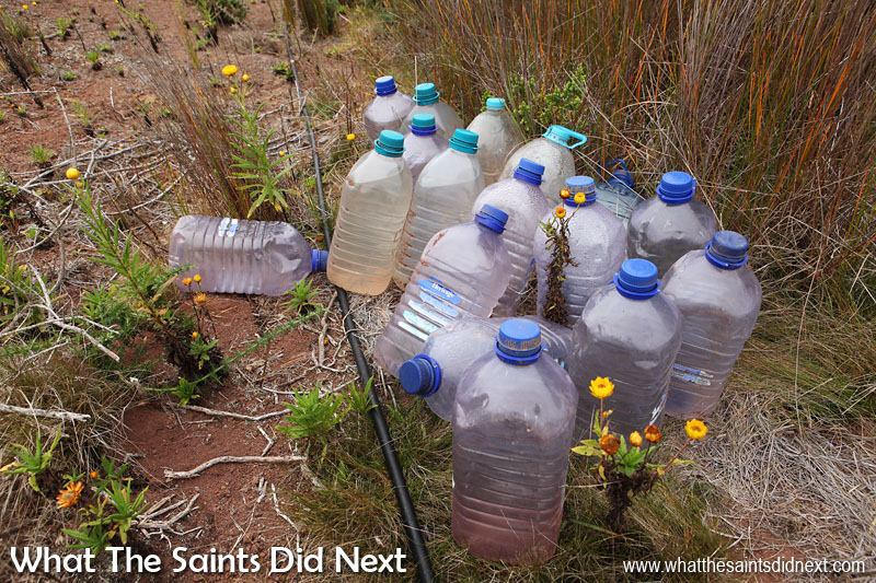 The St Helena National Trust do a lot of work in the Blue Point area, re-introducing endemic plants into the landscape. This collection of water bottles near one of the sites suggests the work involves plenty of heavy lifting. Blue Point post box walk, St Helena Island.