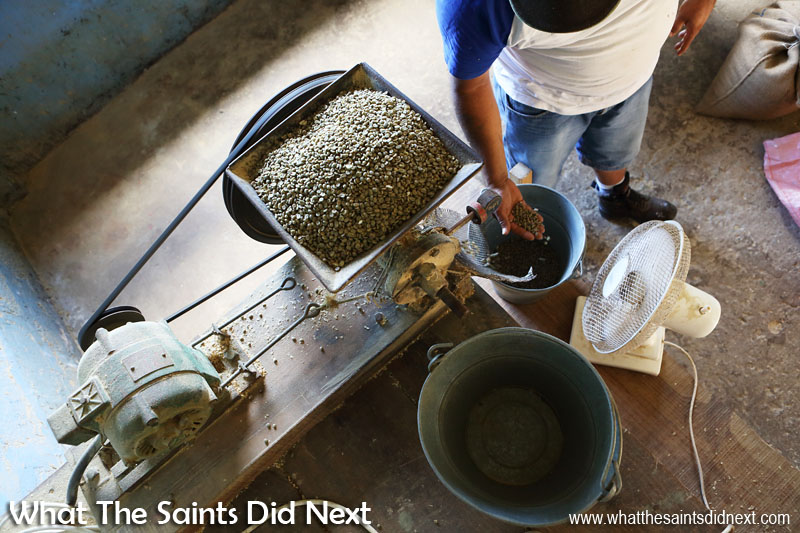 Polishing of the coffee beans. St Helena Coffee by Solomon & Co.