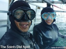 Shark Cage Diving With Great Whites In South Africa