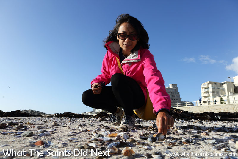 Beachcombing at Sea Point is a relaxing way to while away the afternoon in Cape Town. Take a bag for all the shells you could collect. Stuff to do in Cape Town.