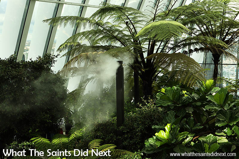 Misting units regulates the Sky Garden humidity at 75% for the giant tree ferns and other plant life.