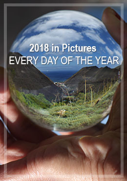 Daily photo challenge