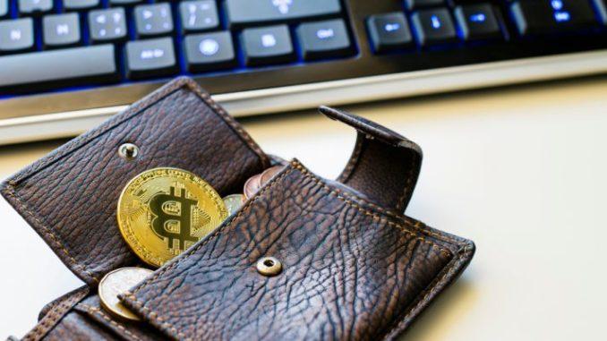 Копилка для биткоинов: как выбрать кошелек для криптовалюты