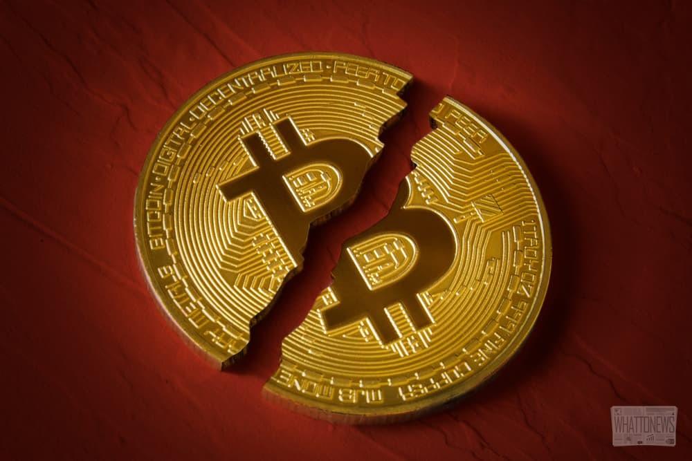 После медвежьего цикла биткоин ждёт восстановление