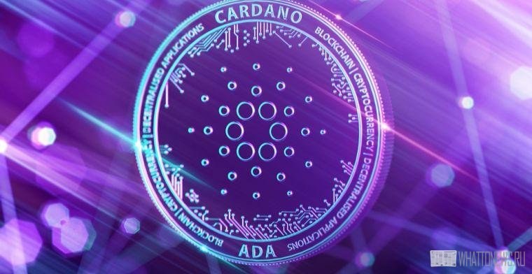Обновление Alonzo Purple в сети Cardano запланировано на начало сентября