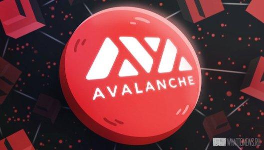 Обзор криптовалюты Avalanche: Перспективы блокчейна и стейкинг токена AVAX