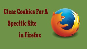 Clear Cookies For A Specific Site