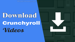 Download Crunchyroll videos with subtitles