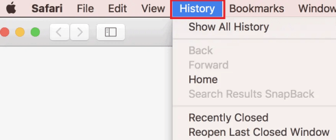 How to Manage & Clear Safari History, Cache & Cookies 1