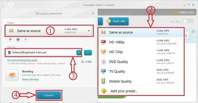 Freemake Video Converter output parameters