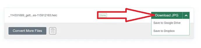 Selection of Download JPG option.
