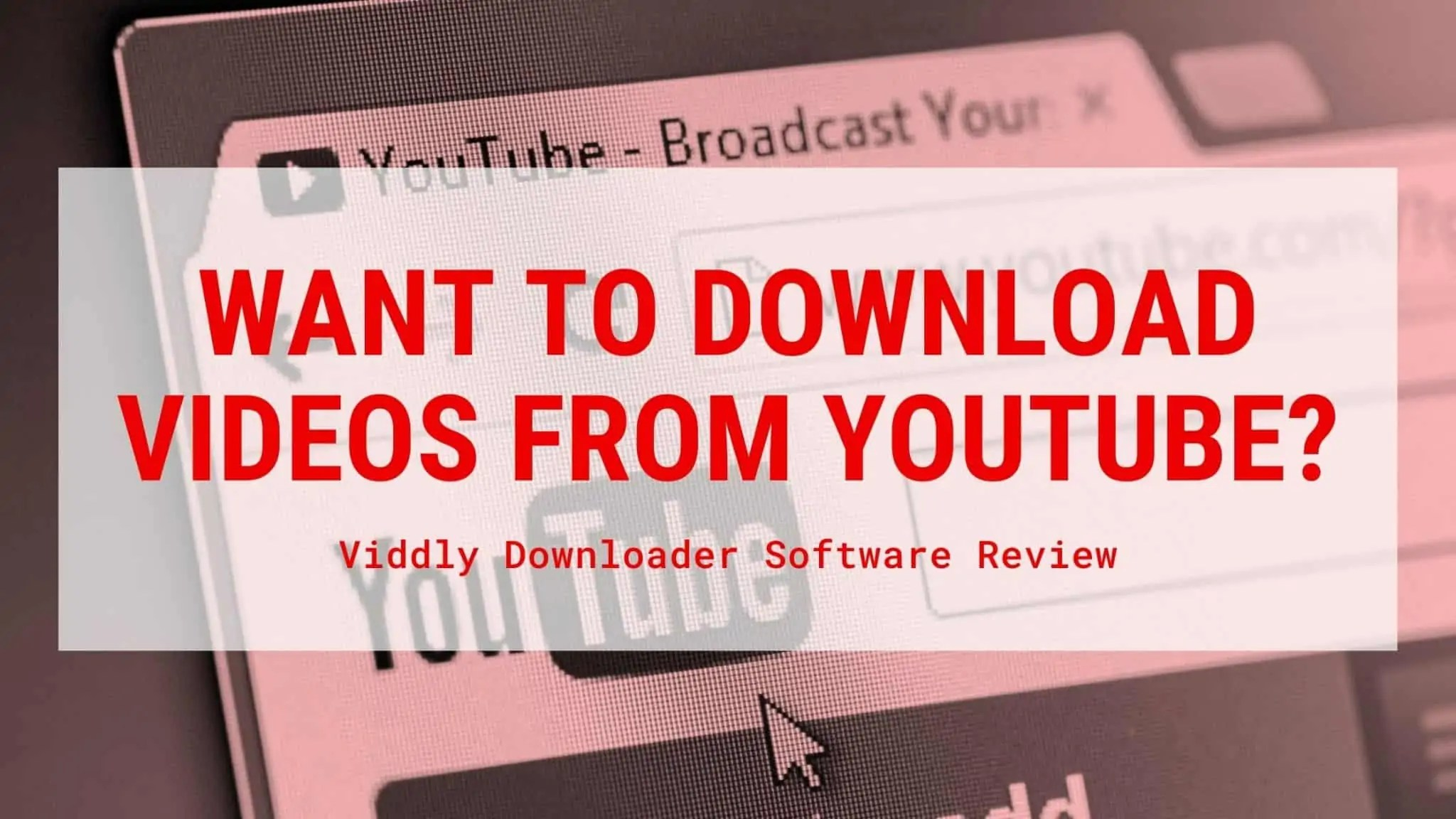 Viddly YouTube Downloader Review