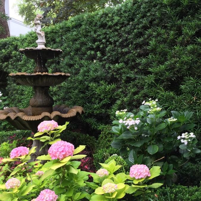 Charleston garden 2