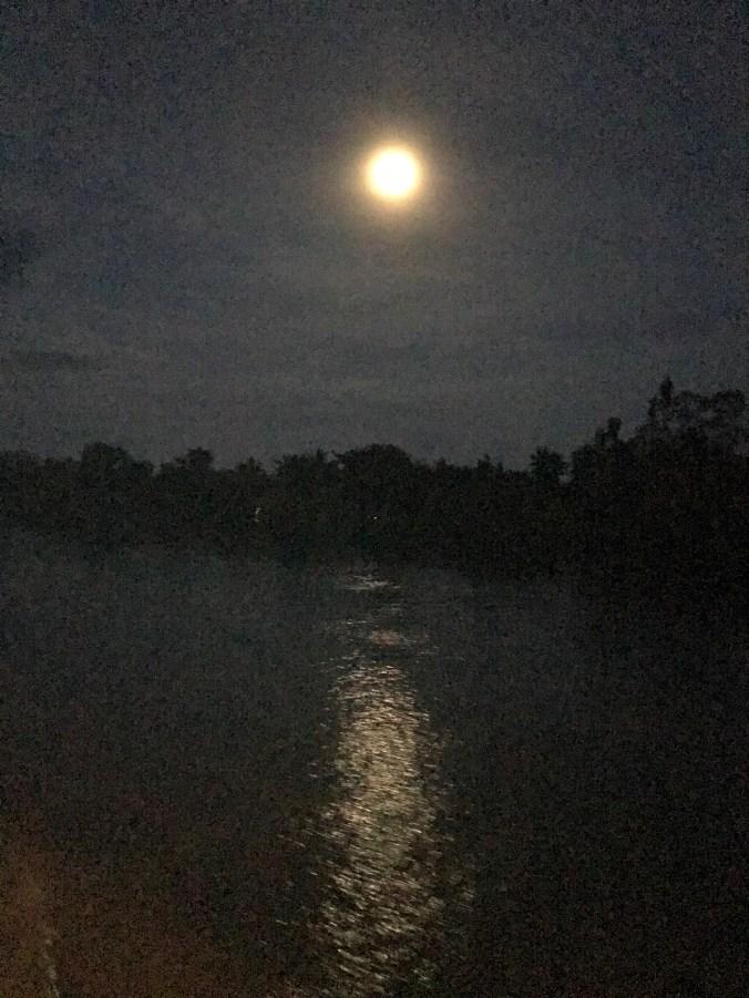 Moonlight over Mekong
