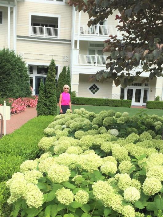 Barbara and Hydrangea