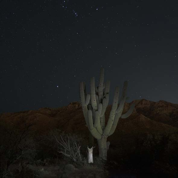 """WINNER of the ARTHUR GRIFFIN LEGACY AWARD,  """"Cactus with Slip, 2014"""" archival pigment print by Kay Kenny (courtesy of the artist and Davis Orton Gallery, Hudson, NY)"""