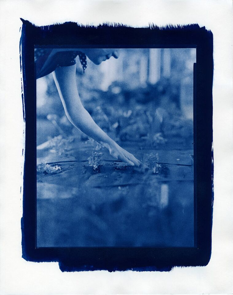 """Planting Parcel in April, 2015"", film negative cyanotype contact print by Ivana George, Honorable Mention Juror's Award (courtesy of the artist and Danforth Art, Framingham, MA)."