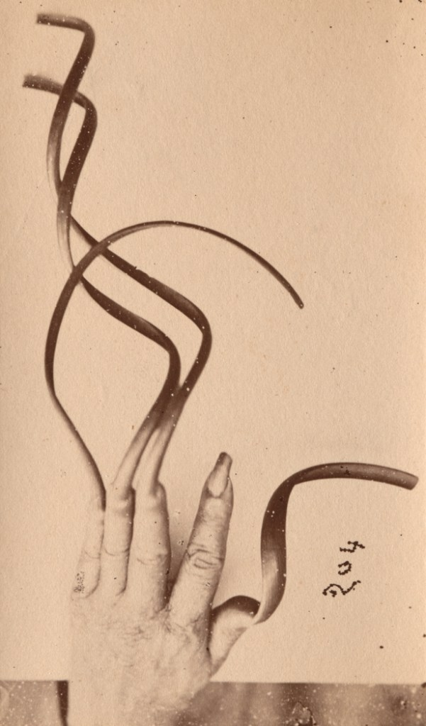 """Hand of an Annamite, about 1866-79"", albumen print by Émile Gsell (France, 1838-1879), (courtesy of the Peabody Essex Museum, Salem, MA)."