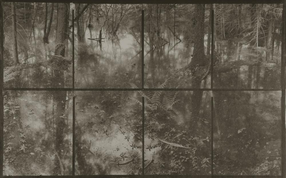 """Flood in Forest, Catskill, N.Y., 2006"" platinum palladium print on handmade Gampi paper by Koichiro Kurita (courtesy of 555 Gallery, Boston)."