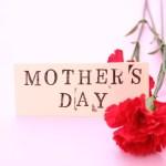 母の日はなぜカーネーション?赤いカーネーションの花言葉や本数の意味