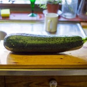 ズッキーニを切って保存の場合の変色や乾燥を防ぐ保存の裏技は?