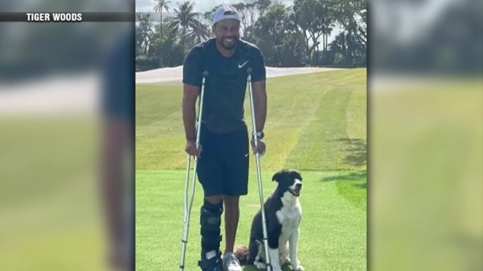 An entirely different animal':Tiger Woods speaks out about recovery after accident – Boston News, Weather, Sports | WHDH 7News
