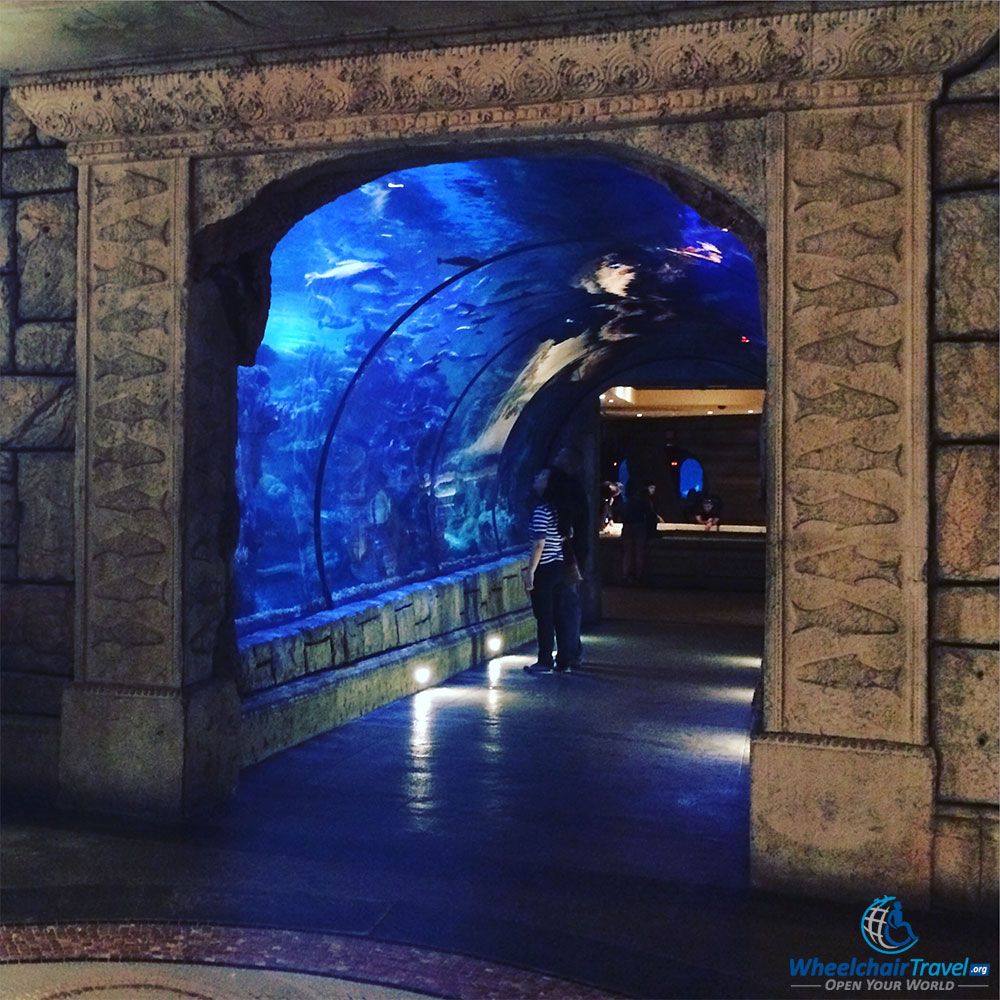 wheelchair accessible things to do in las vegas