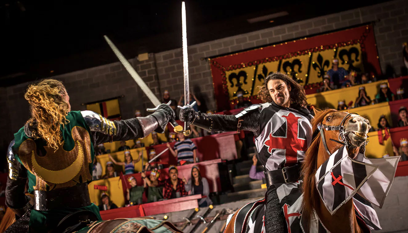 Wheelchair accessible Medieval Times dinner in Chicago Schaumburg