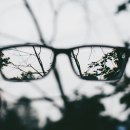 Eyeglasses make the picture of the world clearer to people with reduced vision.