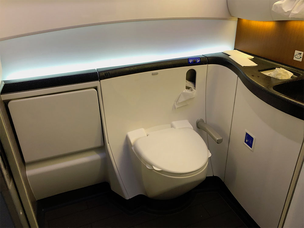 Wheelchair Accessible Airplane Lavatories Amp Bathrooms