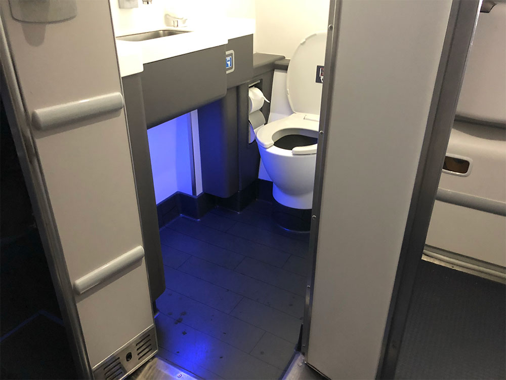 Wheelchair accessible lavatory on Delta's Airbus A220.