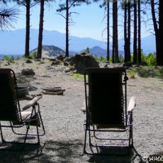 NF Campground Rating – Singletree (Dixie Forest, UT)