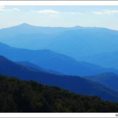 The Deep Blue Draw of the Smoky Mountains