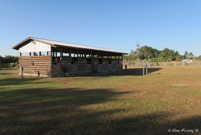View of on-site horse stables and corrals. These are a short walk from the southern loop.