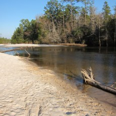 SP Campground Review – Blackwater River State Park, Holt, FL