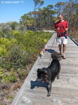 Walking with Polly (FL, 2011)